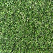 Belfry Artificial Grass 15mm Pile Height
